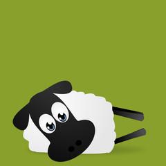 Schaf das auf der Seite liegt.