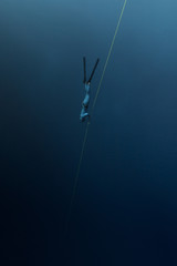 Wall Mural - Free diver