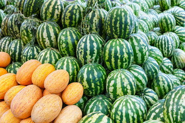 Group of fresh ripe green watermelons and yellow sweet melons
