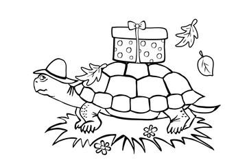 Schildkröte (Malvorlage)
