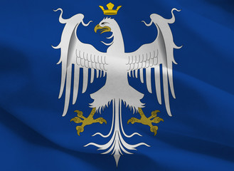 duchy of modena, historical flag, italy