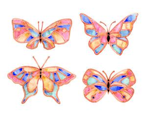 Watercolor butterfly summer