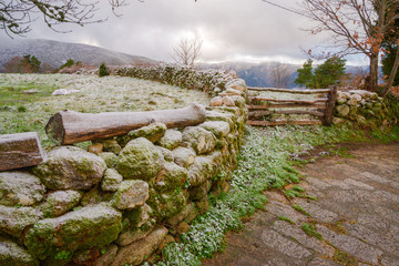 stone wall and wooden fence under the frost