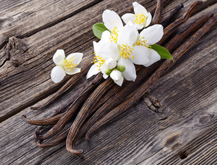 Canvas Prints Spices Vanilla with jasmine flowers