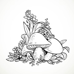 Decorative graphics mushrooms and flowers. Black and white. Colo
