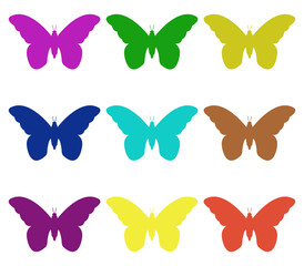 butterflies on white background