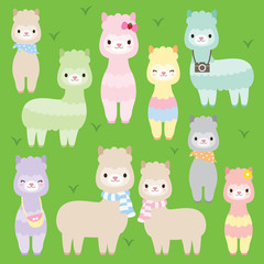 Vector illustration of cute alpacas or llamas in different colors.