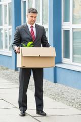 Mature Businessman Carrying Box
