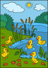 Color pictures: birds. Five little cute ducklings play near the lake. They are smiling and happy.