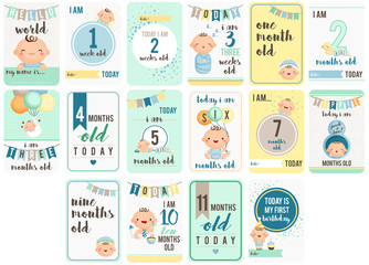 Baby Boy Weeks and Months Card