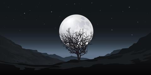 Clair de Lune - Arbre - méditation