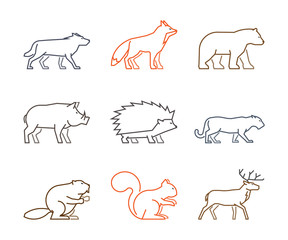 Colored outline set of forest animals. Line silhouettes wild animals isolated on white. Vector icons boar, squirrels, deer and beaver. Linear symbol fox, puma, wolf and bear.