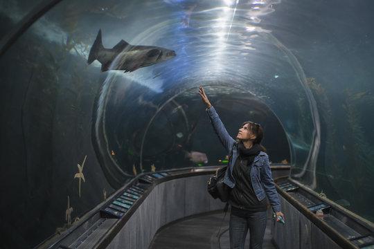 Caucasian woman admiring shark in aquarium tunnel