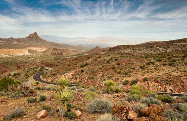 scenic road in the Mojave national park