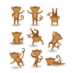 cute monkey  design