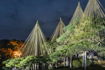 夜の兼六園秋景色