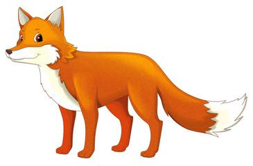 Cartoon animal - fox - isolated - illustration for children