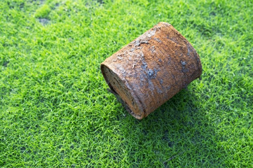 rusty can on young grass