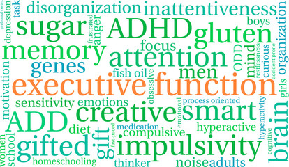 Executive Function word cloud on a white background.