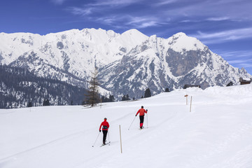 Cross-country skiing langlauf
