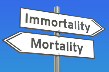 immortality or mortality concept on the road signpost, 3D render Wall mural