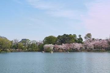 春の洗足池