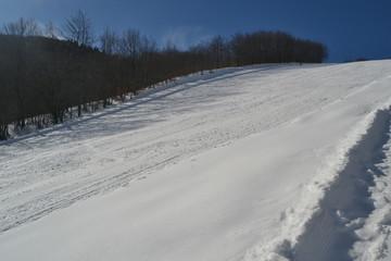 winter and ski