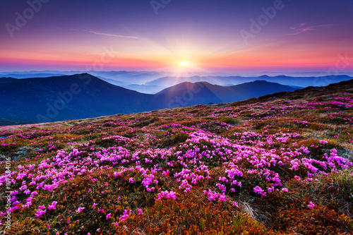 Wall mural mountains landscape