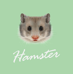 Vector Illustrated portrait of Hamster.