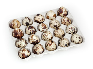 Quail eggs isolated on white background with clipping path
