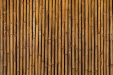 dry bamboo pattern background