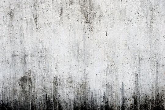 汚れたコンクリートの白い壁