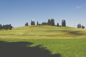 Allgäu, Hügellandschaft