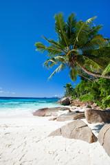 Wall Mural - Perfect beach in Seychelles