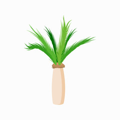 Date palm tropical tree icon, cartoon style