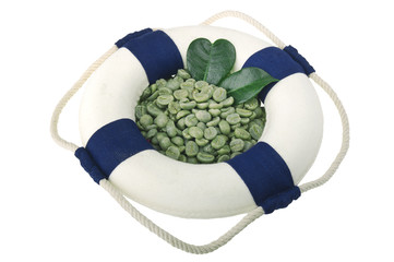 Wall Mural - Lifebelt with green coffee beans on the white background