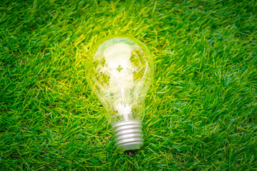 Eco concept - light bulb grow in the grass..