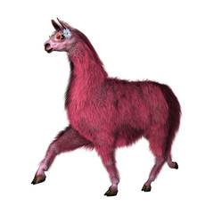 3D Illustration Pink Lama on White
