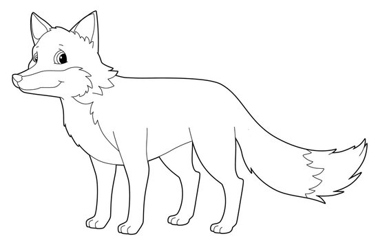 Cartoon animal - fox - isolated - coloring page - illustration for children