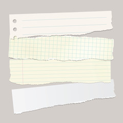 Vector torn pieces of paper.
