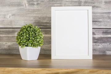 Blank white frame and plant