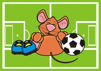 mouse, rat, rodent, pest, animal, isolated, toy,  cartoon, brown,  lying,  game, sports, field, boots, grass, football, goal, ball, football, soccer, play