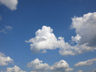 cloud and summer sky