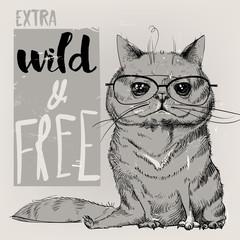 cute portrait of a cat