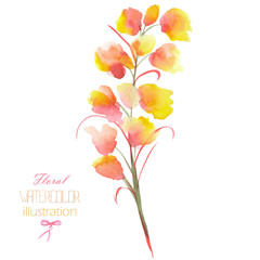 An illustration with the isolated watercolor yellow, orange and red Delphinium (Larkspur) flower, hand drawn on a white background,  for self-compilation of the bouquets and ornaments