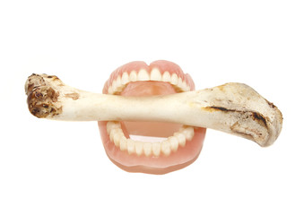 A large bone in the denture on an isolated background