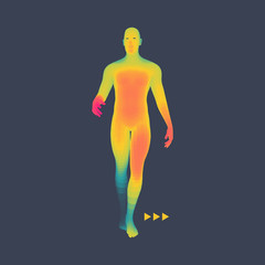 Man Stands on his Feet. 3D Model of Man. Human Body Model. Vector Illustration.