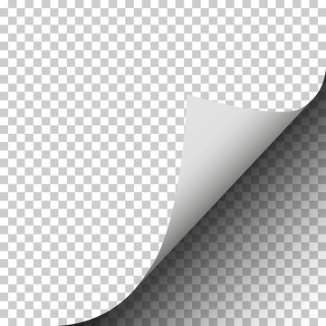 Page curl of a blank sheet of paper on transparent background