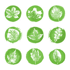 Leaves imprints icons
