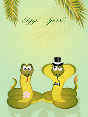cobra and snakes spouses